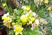 Three or four of the Mothering Sunday posies, photographed in the garden